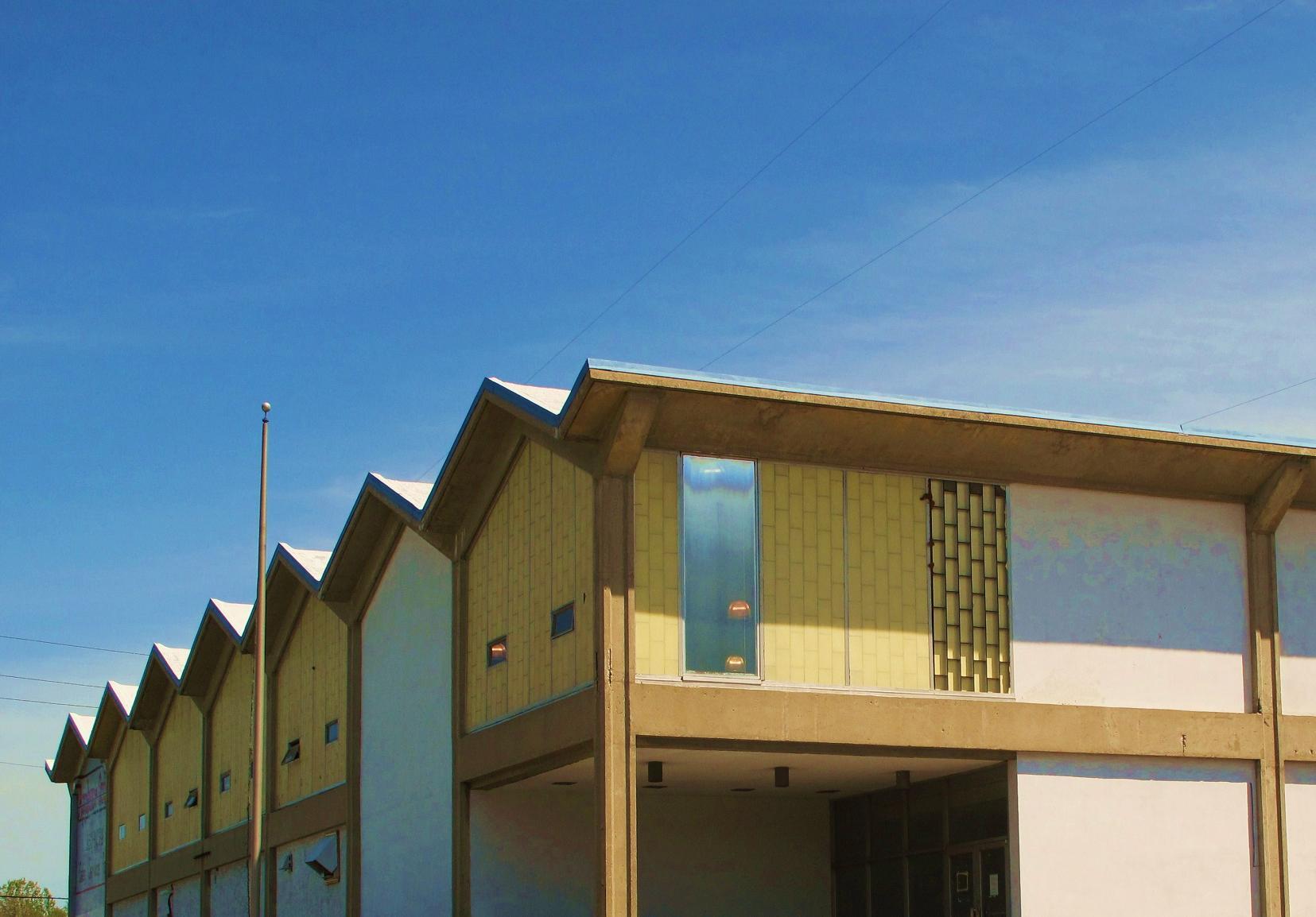 Building Language: Pleated Roof