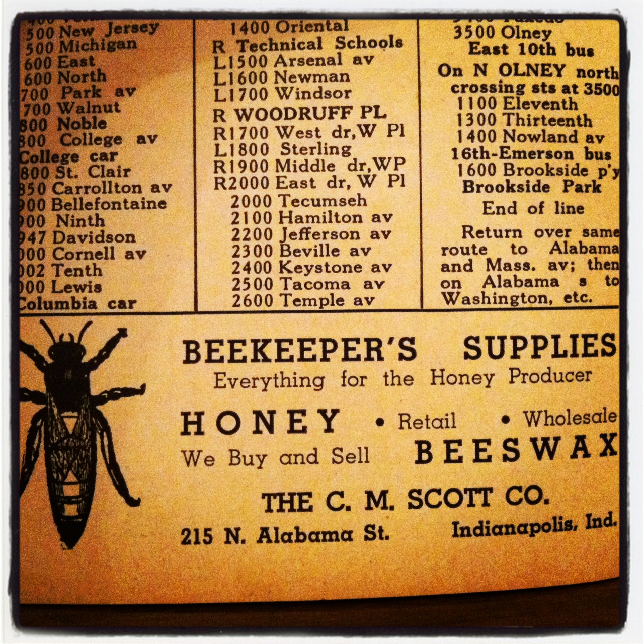 Sunday Ads: Unexpected Honeybees