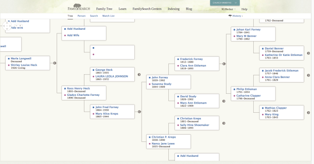 The beginnings of my tree on the new FamilySearch Family Tree website