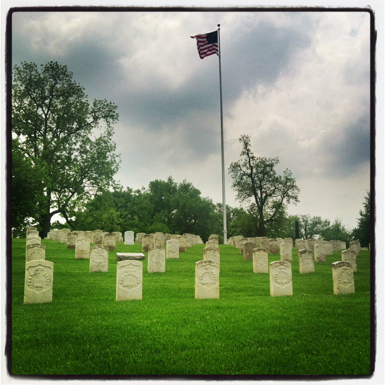 Friday Favorite: Indy the Patriotic