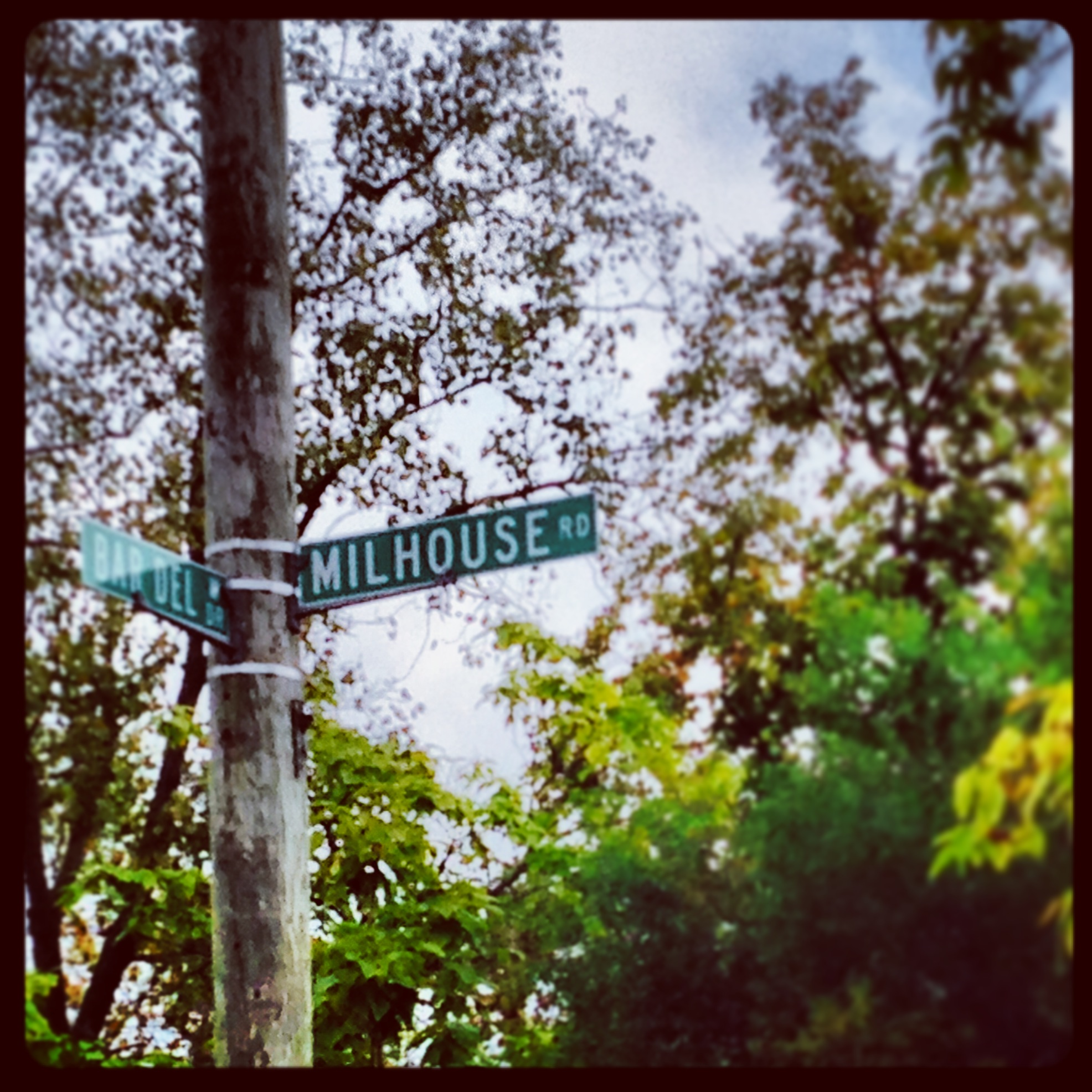 What's in a Name: Milhouse Road
