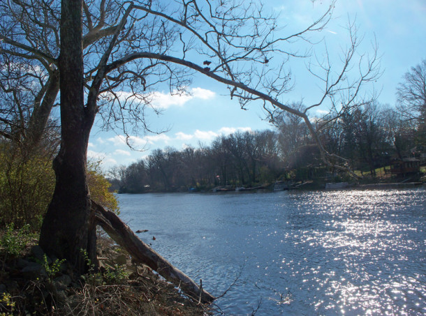 White River as viewed from Ravenswood Park (photo by Sharon Butsch Freeland)