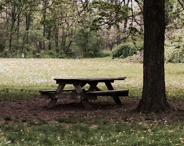 What a relaxing place to enjoy your lunch!  Indy Parks has ample picnic facilities at its nearly 200 parks around the city.