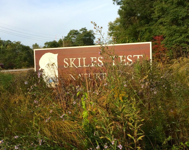 Welcome to Skiles Test Nature Park