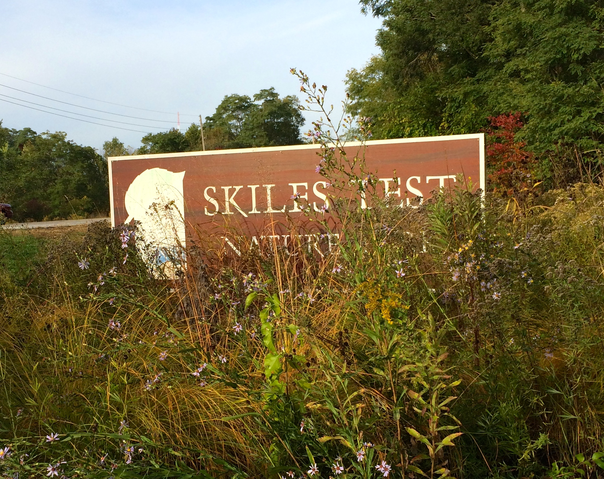 In the Park: Skiles Test Nature Park