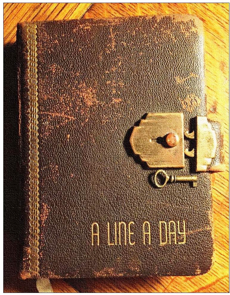 Indianapolis Collected: The Secret in the Old Diary