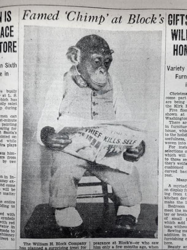 November 19, 1930