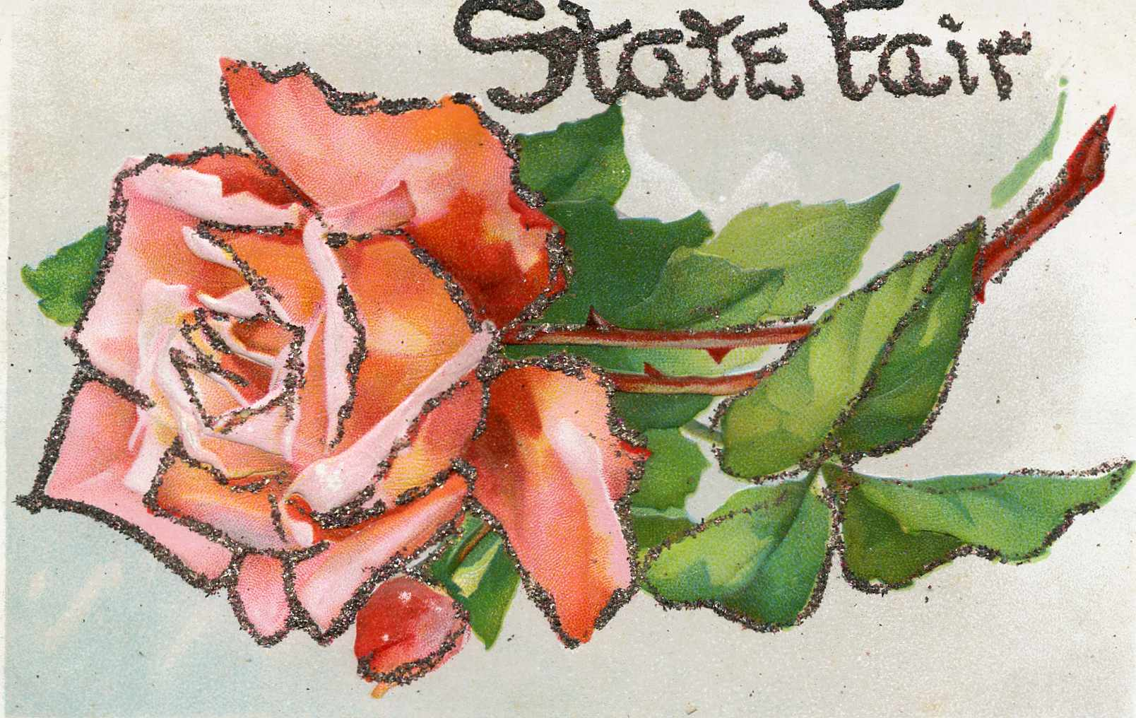 Friday Fave: State Fair Souvenirs