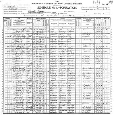 1900 Census Image