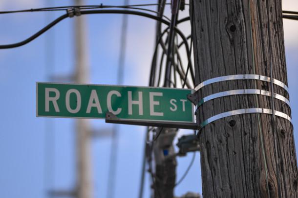 Roache (1)