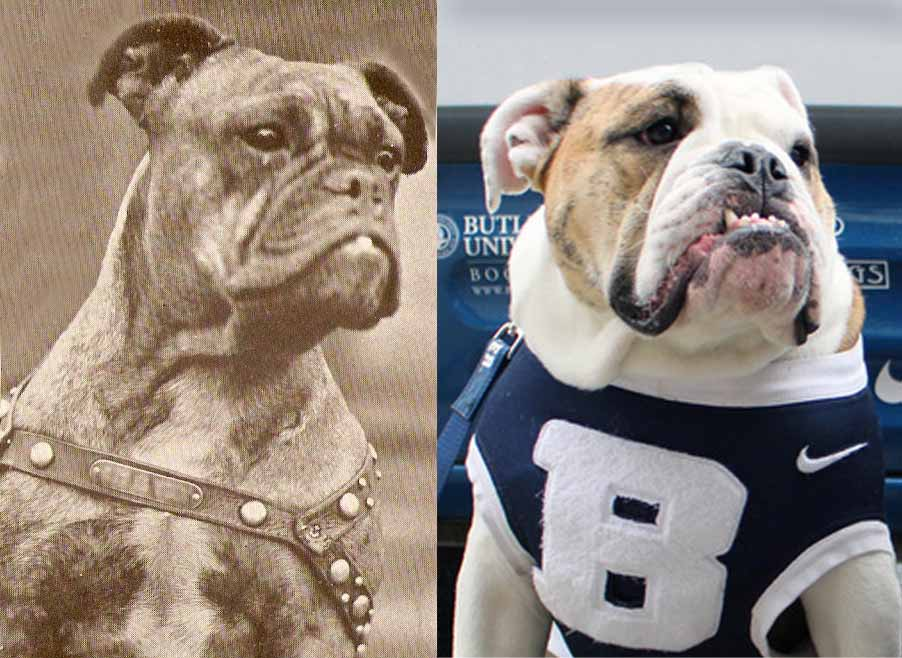 Indianapolis Then and Now: The Butler Bulldogs (RIP Blue II)