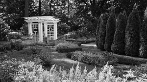 Percival Gallagher, of the acclaimed landscape architecture firm Olmsted Brothers, designed Oldfields' magnificent gardens and grounds in the 1920s. Lilly House is closed January through March for seasonal maintenance but the gardens are open year round, dawn to dusk. Image credit: IMA