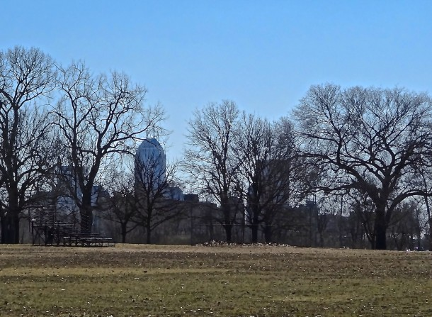 A view of the Indianapolis skyline from Watkins Park
