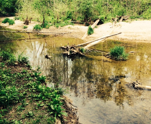 Creek-stomping is a favorite activity at Marott Park