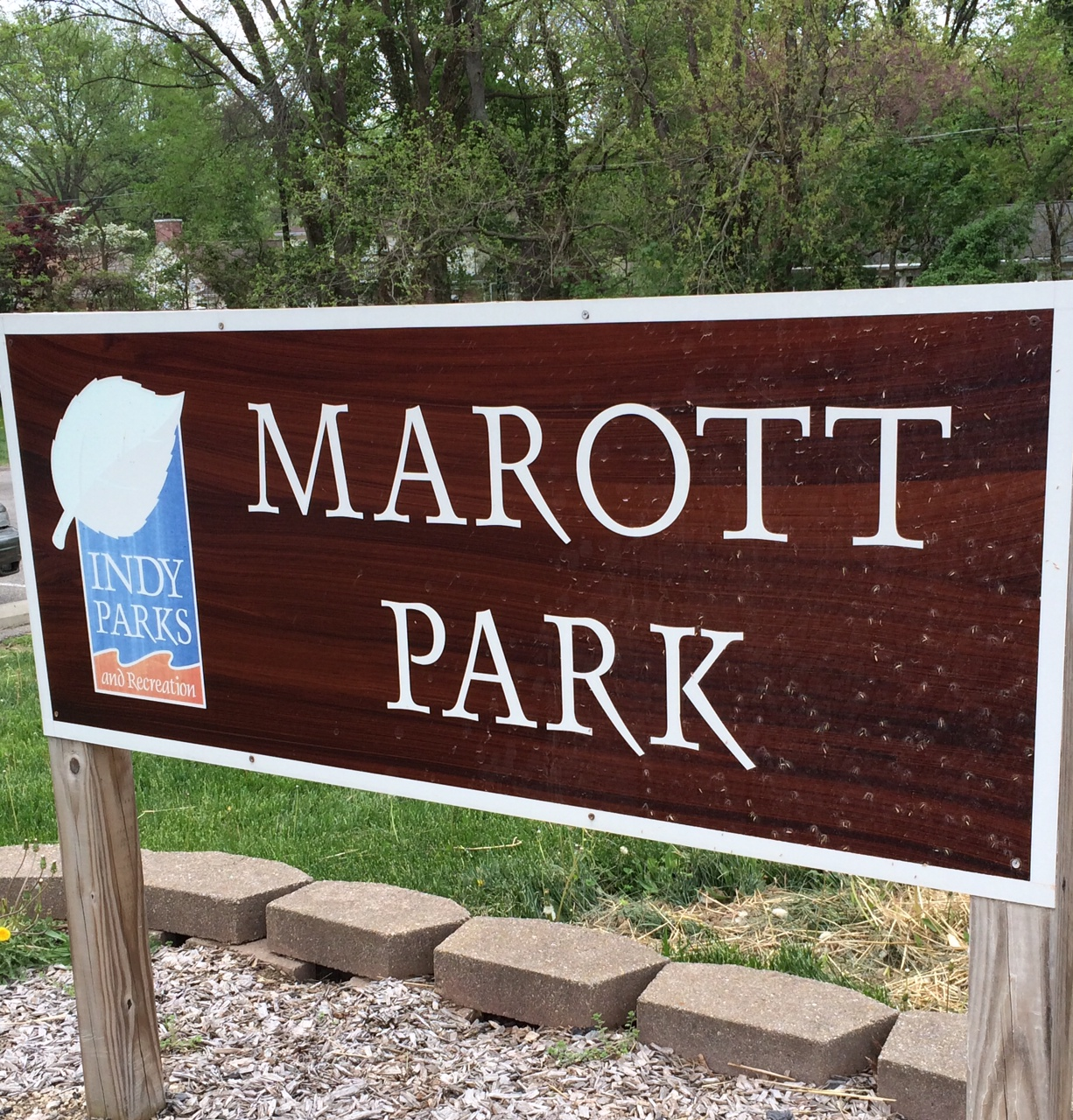In the Park: Marott Park