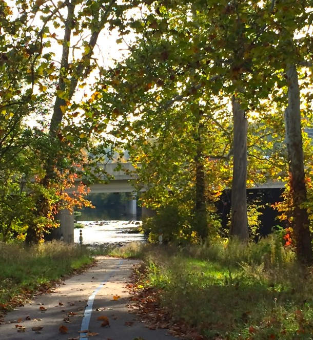 It's hard to believe that one of the city's most primitive parks lies beneath one of the busiest stretches of I-465.