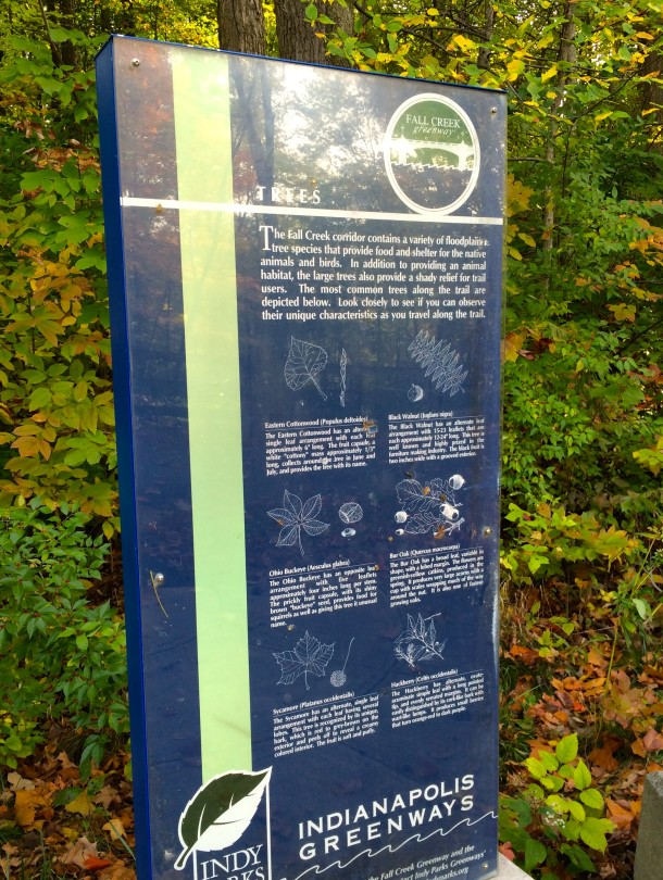 A placard at one of the trailheads helps hikers identify trees in the park.