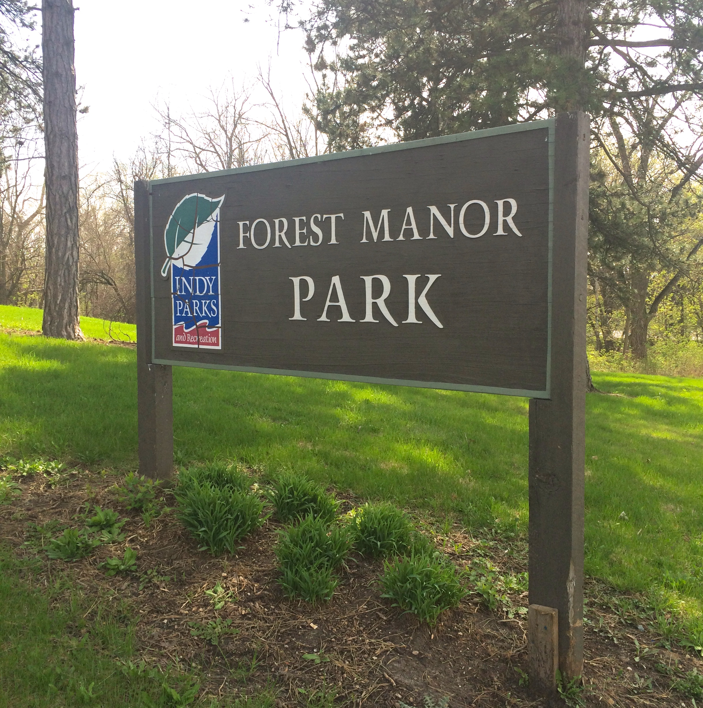 In The Park: Forest Manor Park