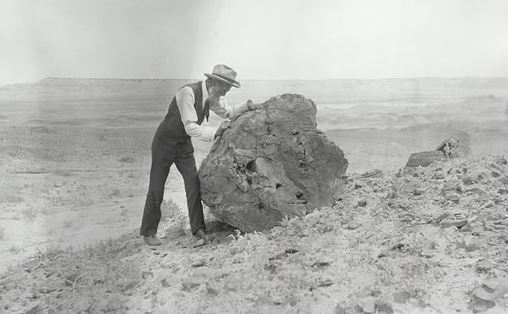 Muir in Petrified Forest 2