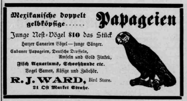 June 23, 1905